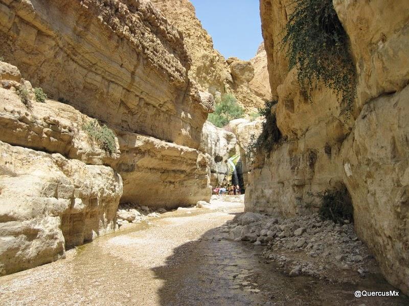 Entrada a la cascada escondida en Wadi Arugot, ruta azul con blanco