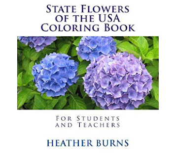 State Flowers of the USA Coloring Book