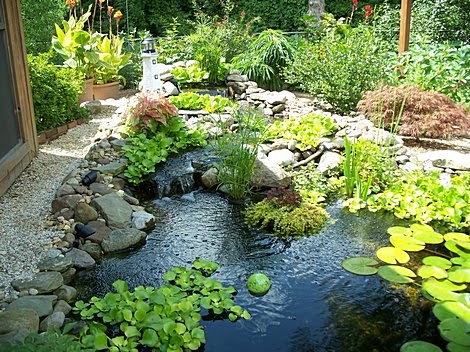 The pond blogs for Small garden with pond design