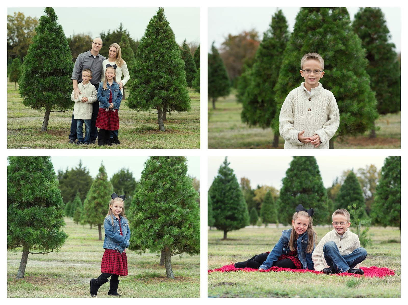 Christmas Tree Farm Photography.Carrie Saindon Photography Christmas Session With The R