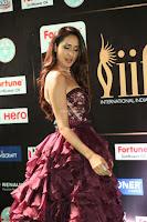 Pragya Jaiswal Sizzles in a Shantanu Nikhil Designed Gown  Exclusive 056.JPG