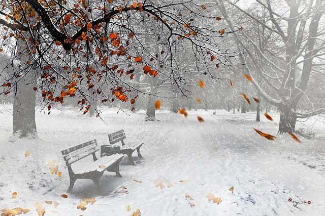 Chút se lạnh đầu mùa đông stt mùa đông se lạnh