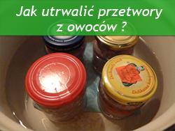 http://psprzelotem.blogspot.com/2015/09/dziko-rosnace-owoce-jadalne-w.html