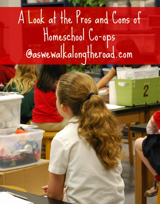 Pros and cons of homeschool learning co-ops