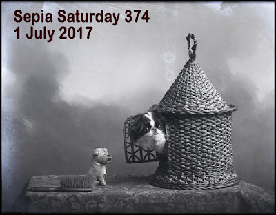 http://sepiasaturday.blogspot.com/2017/06/sepia-saturday-374-1-july-2017.html