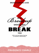 BREAK-UP SURVIVAL GUIDE