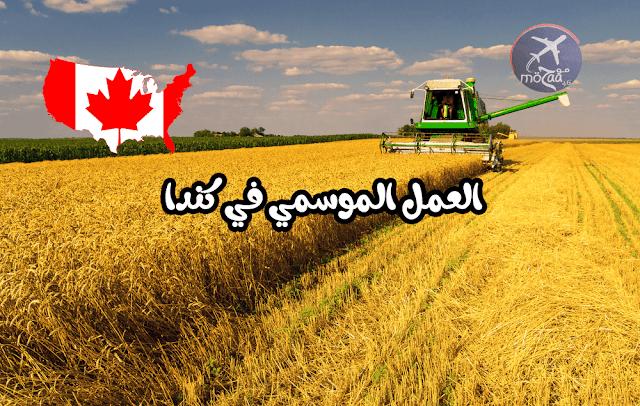 برنامج العمل الموسمي للزرعة للهجرة الى كندا