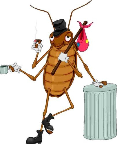 Natural Home Remedies Roaches