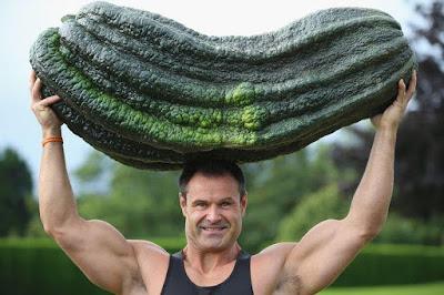 muscular-agro-man