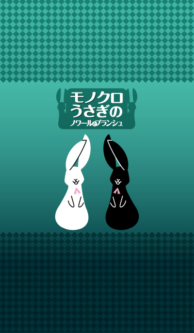 Black and white rabbits Theme Turquoise