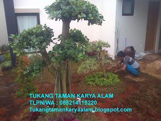 <img scr='nama_file_gambar.jpg'  alt='Tukang taman Jakarta' />