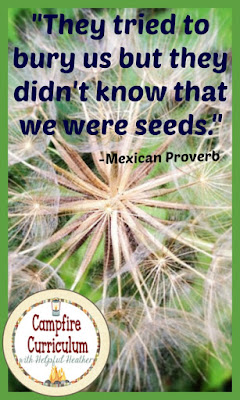 "The Mexican Proverb ""They tried to bury us but they didn't know that we were seeds"" stays with me always.  I know you want to give EVERY child in your classroom the opportunity to succeed.  This post will give you insight and propel you into the new year so that success will be possible for every student!"
