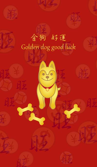 골든 행운 개 - Shiba Inu dog