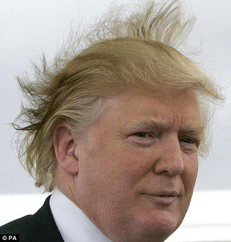 Funny Donald Trump 2