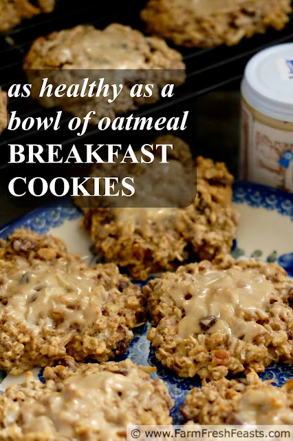 image of 'as healthy as a bowl of oatmeal' breakfast cookies