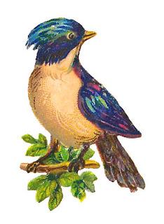 bird image tree clip art