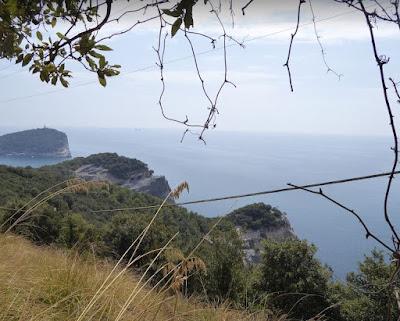 Veduta dell'isola del Tino