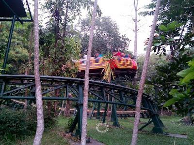 roller-coaster-taman-safari