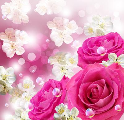 Valentinstag Hintergrundbilder