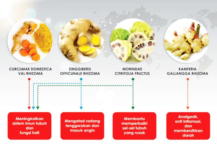 Cairan Obat Dalam, Hirvero, Jamu Tetes Herbal, Obat Tetes Herbal, Produk ABE,
