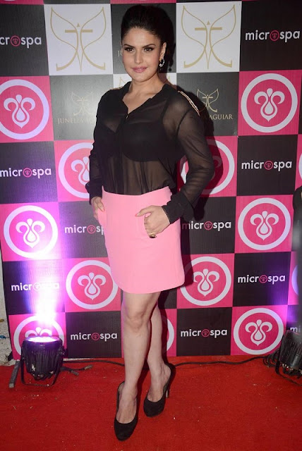 Zarine Khan Hottest Picture
