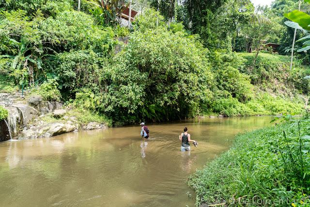 Vallée de la Sungaï Ayung - Ubud - Bali