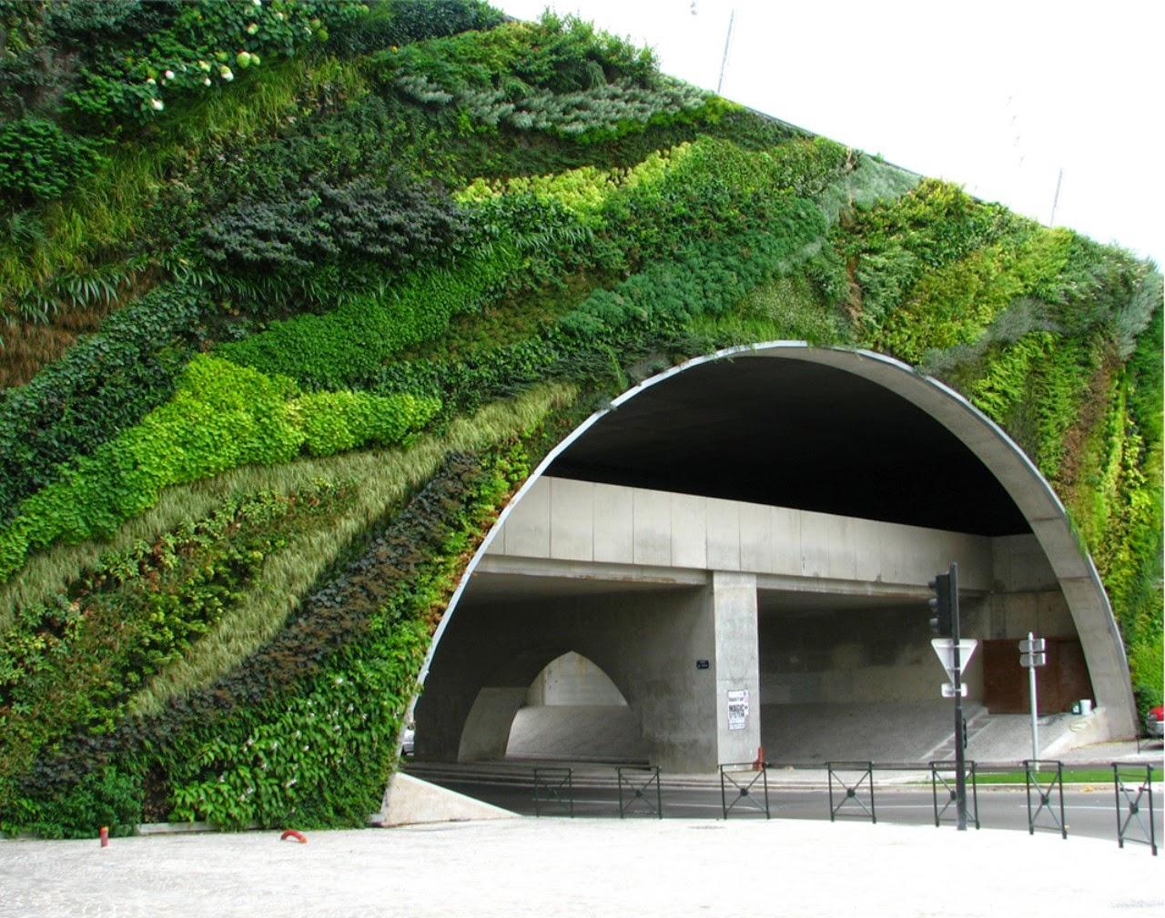 Pareti Verdi Verticali Costi il giardino delle naiadi: soluzioni architettoniche: verde