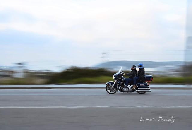 Pillados - Encarnita Fernández