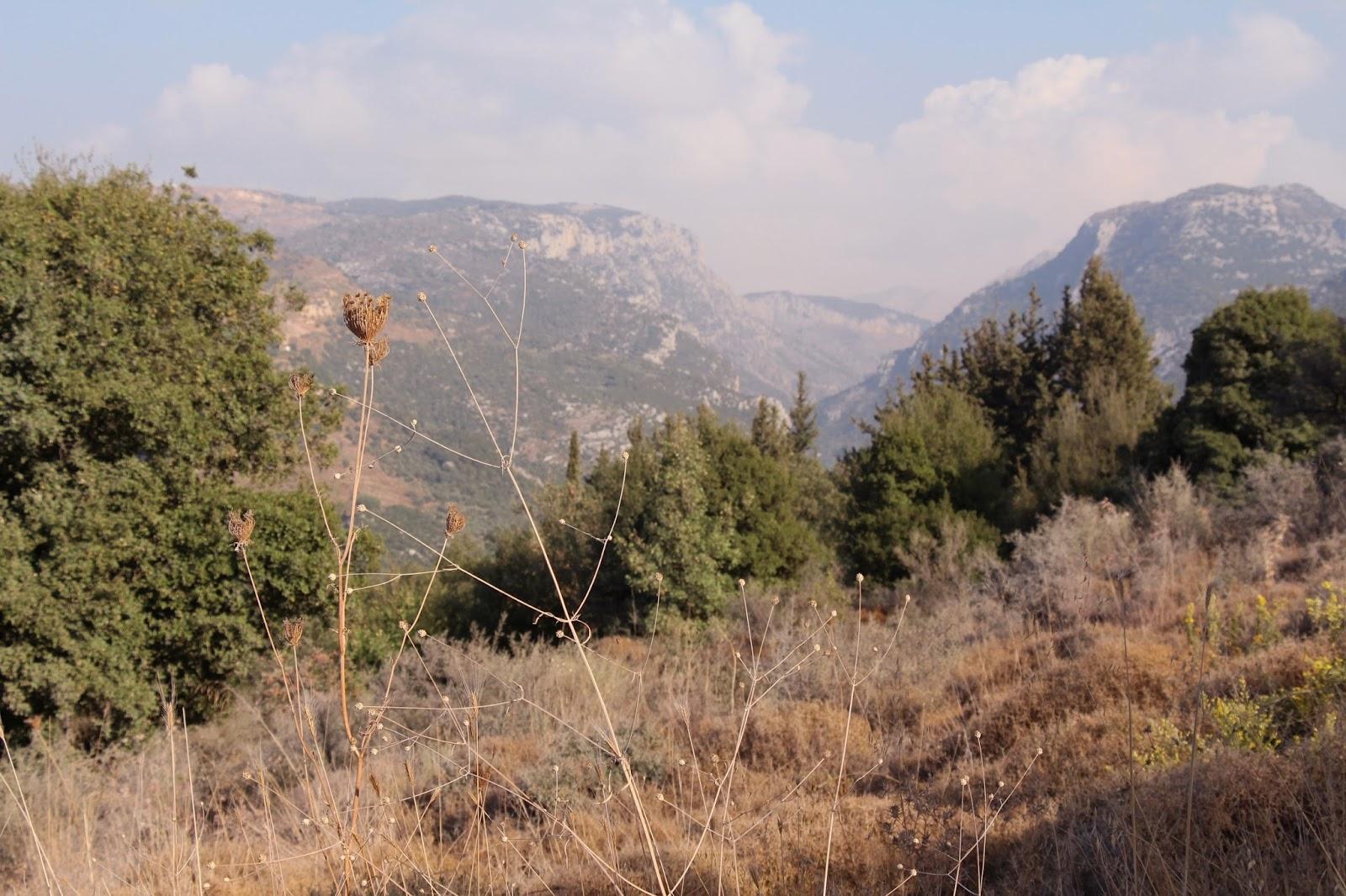 Wanderung durch die Berge