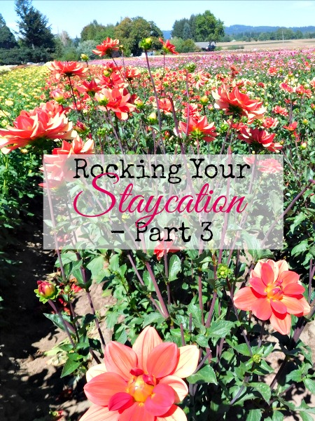 budget staycation tips