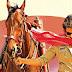 Sardaar Gabbar Singh Gulf Premiere Show Details