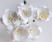http://ortikk.com/pl/p/Kwiaty-papierowe-wisni-5szt.-biale/179