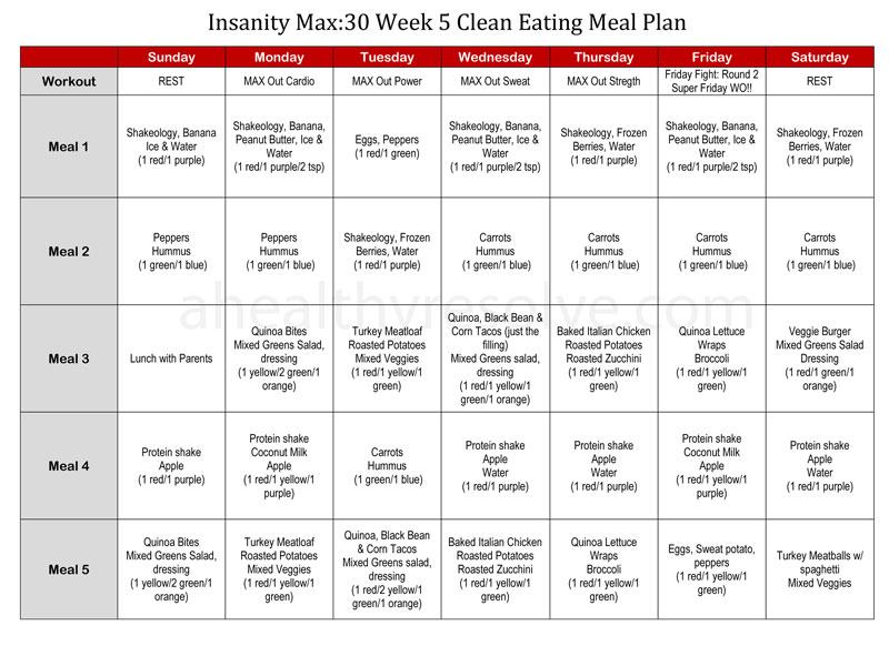 Insanity workout Manuals pdf