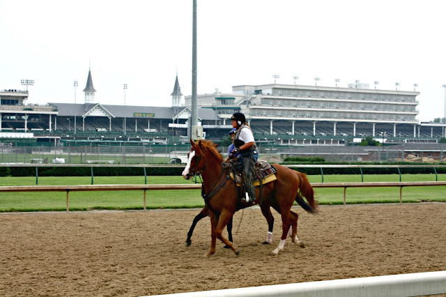 Horses exercising at Churchill Downs in Louisville, Kentucky