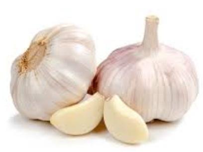 Berbagai Manfaat Bawang Putih untuk Kesehatan dan Kecantikan