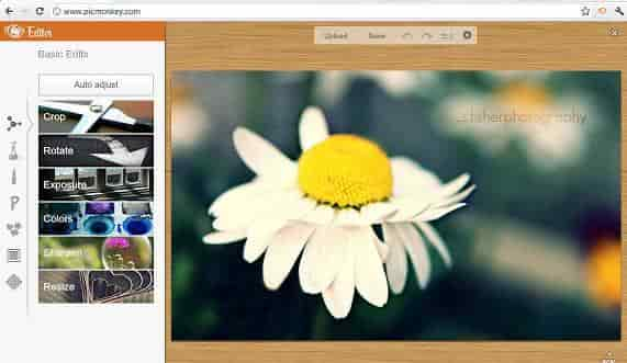 picmonkey image editing software for blog post image
