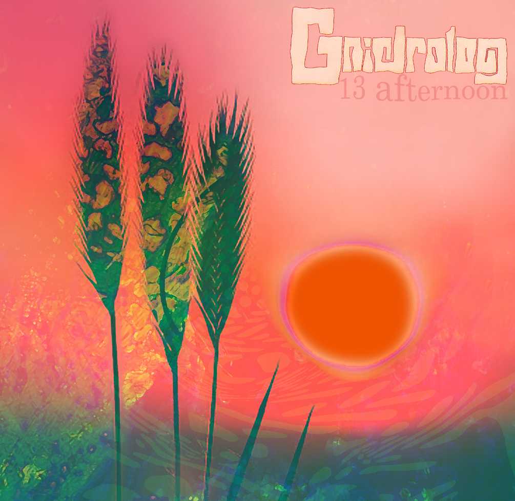 GNIDROLOG:  13 afternoon