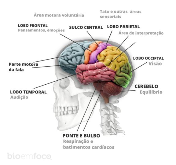 Câncer cerebral, raro e de difícil reconhecimento