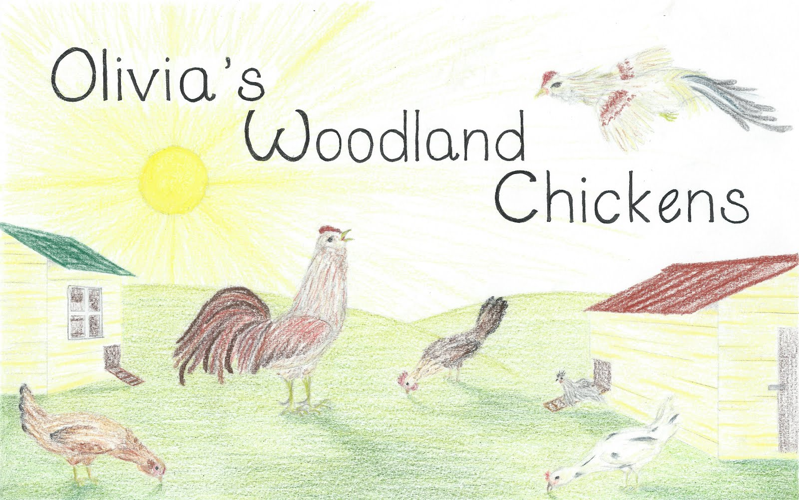 Olivia of the Chickens