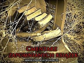 http://magicznyswiatksiazki.pl/maj-na-cmentarzu-zapomnianych-ksiazek-4/