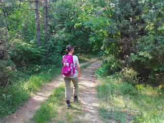 kirándulás, tippek, tanácsok, túratippek, erdőjárás, erdő, termszetjárás, természet, pilis, vitai kati, hátizsák