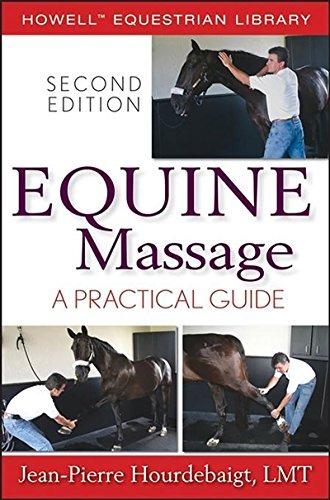 efectivo masaje salida