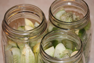 IMG 6207 - Homemade Dill Pickles