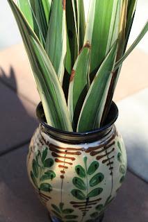 Kähler and Yucca gloriosa 'Variegata'