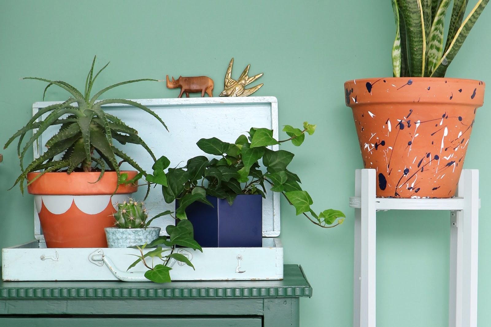Decoraci n con plantas blog de decoraci n diy ideas for Decoracion de plantas