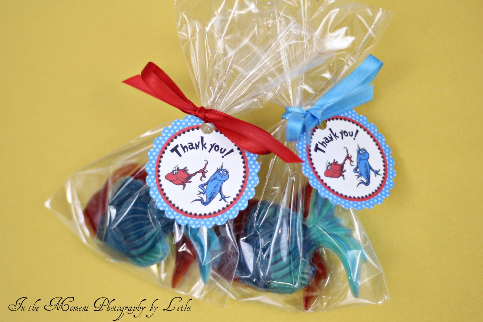 Dr Seuss Baby Shower Party Favors