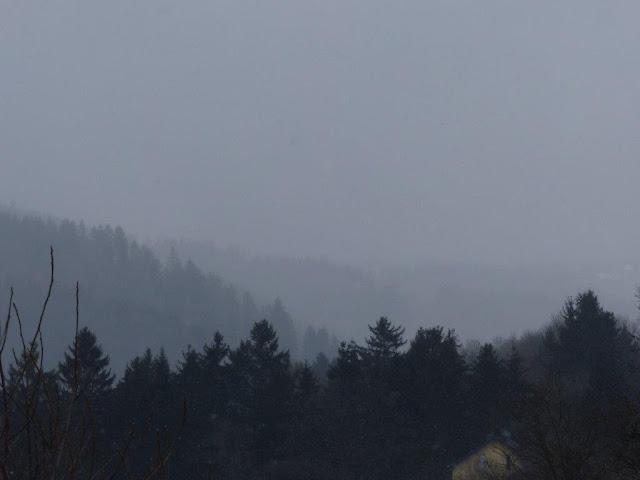 Eifel Urlaub Blumenthal Hund Ferienwohnung Winter Schnee Wanderung