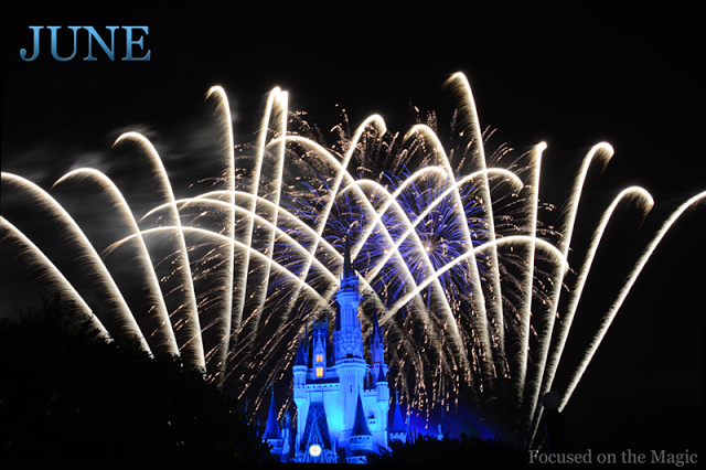 Wishes Fireworks Spectacular at Walt Disney World