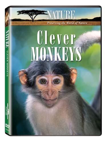 nudity in she monkeys