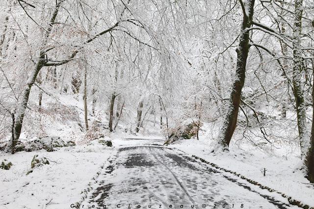 Neige dans les Gorges d'Apremont, Forêt de Fontainebleau, Barizon, le 07 février 2018